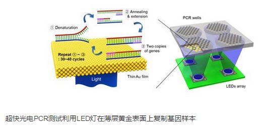 细数近年LED在医疗领域的突破性研究索具
